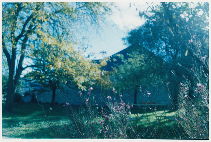 Analog photopraphy color wetprint
